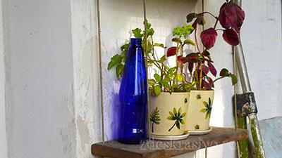 синяя бутылка