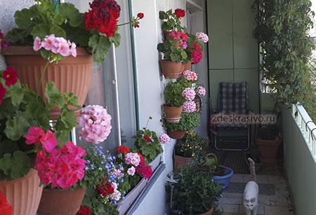 balkon-bez-petuniy