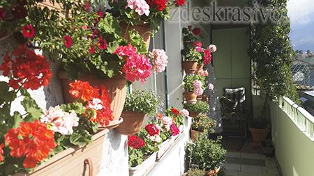 Как обустроить открытый балкон