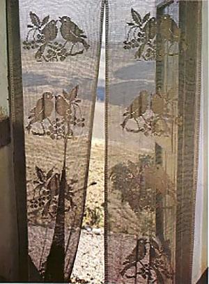 photo-rideau-oiseaux-cerisier