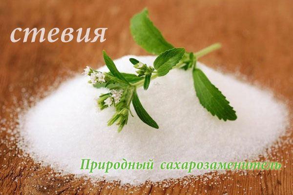 Стевия - растение являющееся сахарозаменителем