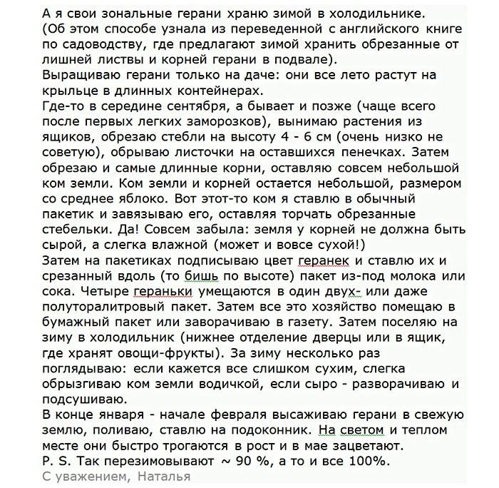 Geran_v_holodilnike_otzyv