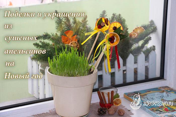 Podelki_i_ukrasheniya_iz_syshenyh_apelsinov_na_Novy_god