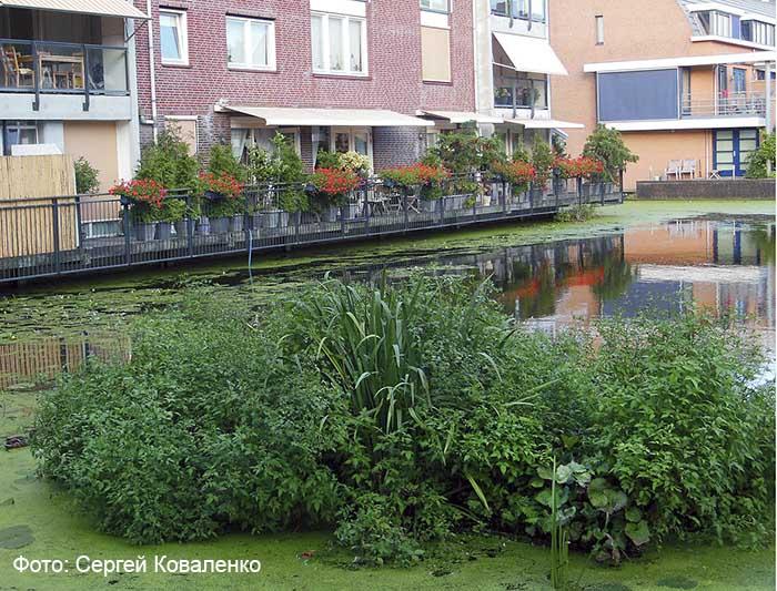 Голландские дворики садики и цветники 18