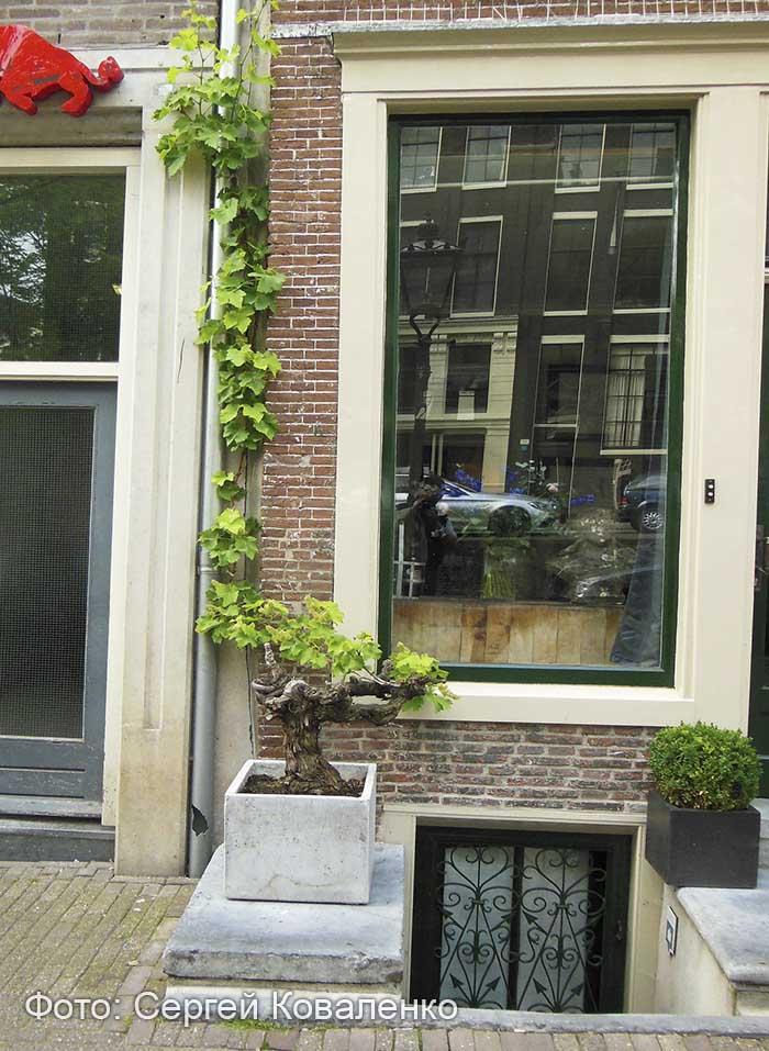 Голландские дворики садики и цветники 19