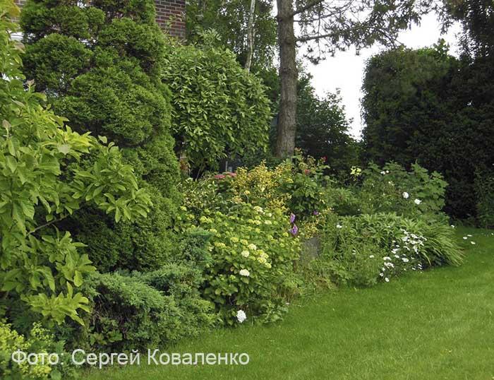 Красивый сад в Голландии