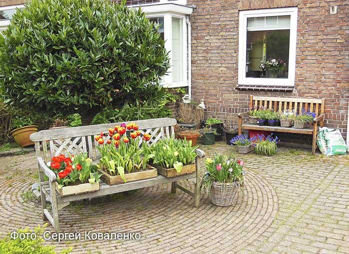 Голландские дворики садики и цветники 4