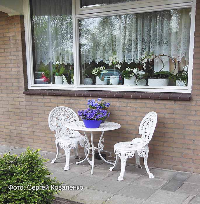 Голландские дворики садики и цветники 5