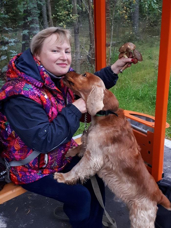 Как выбрать собаку - советы бывалого