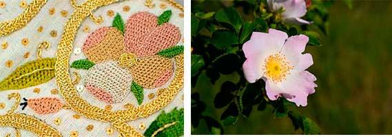 Елизаветинская вышивка образец — шиповник